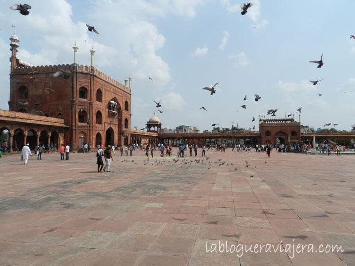 Mezquita-Old-Delhi-India